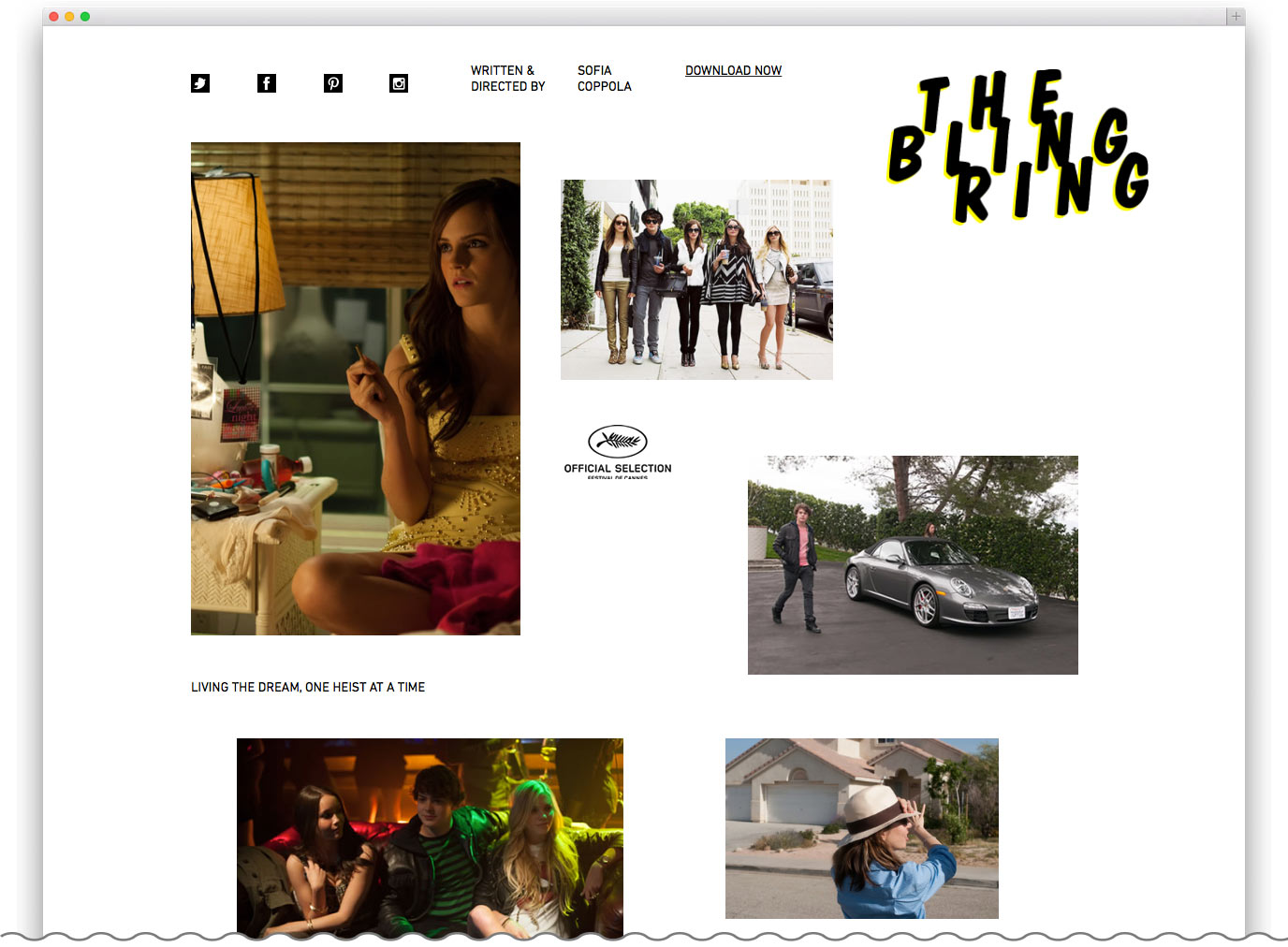 Bling Ring Website