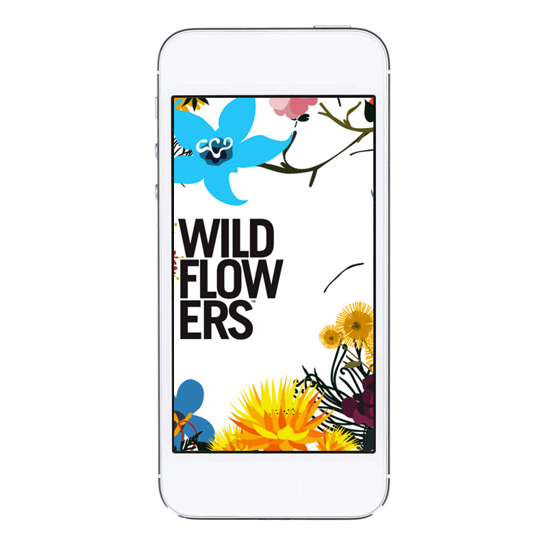 Wildflower Wishes App